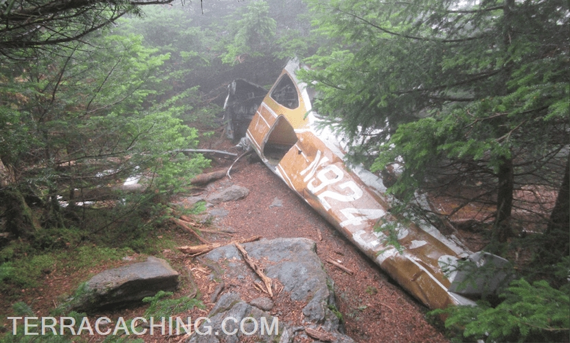 Airplane wreckage in green foggy forest
