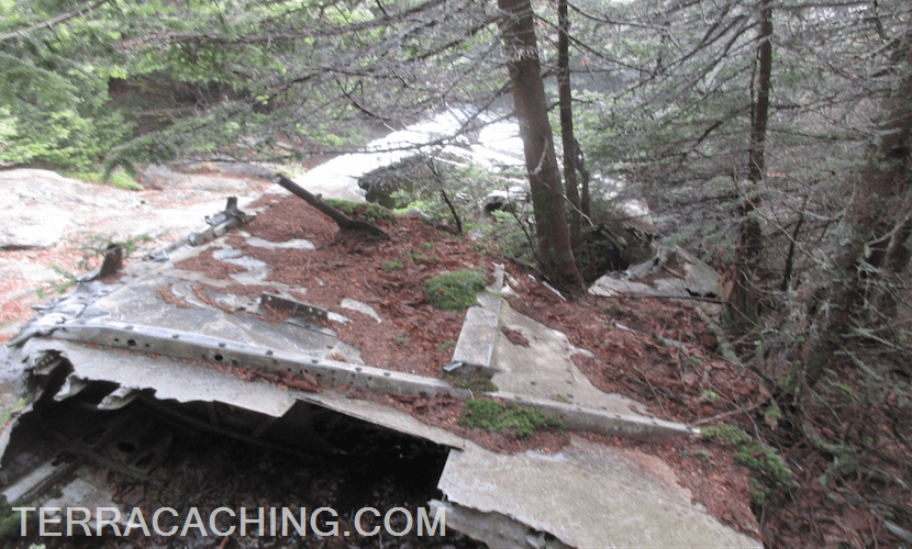 Airplane wing wreckage in forest