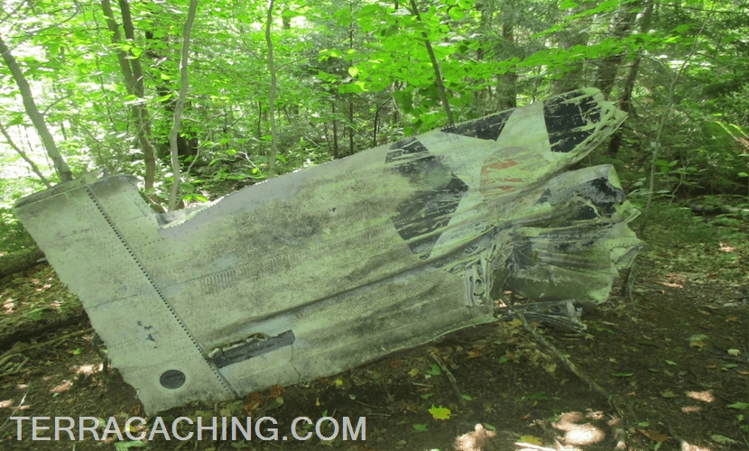 Airplane tail wreckage in forest