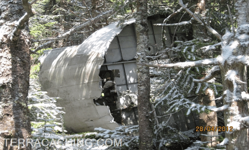 Airplane wreckage in forest